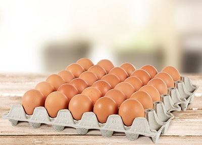Contenitori per uova in polpa legno